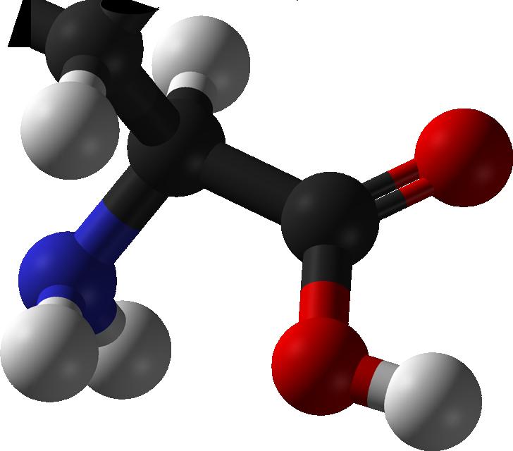CKD慢性腎臓病予防早期発見!オルニチンで予防と改善