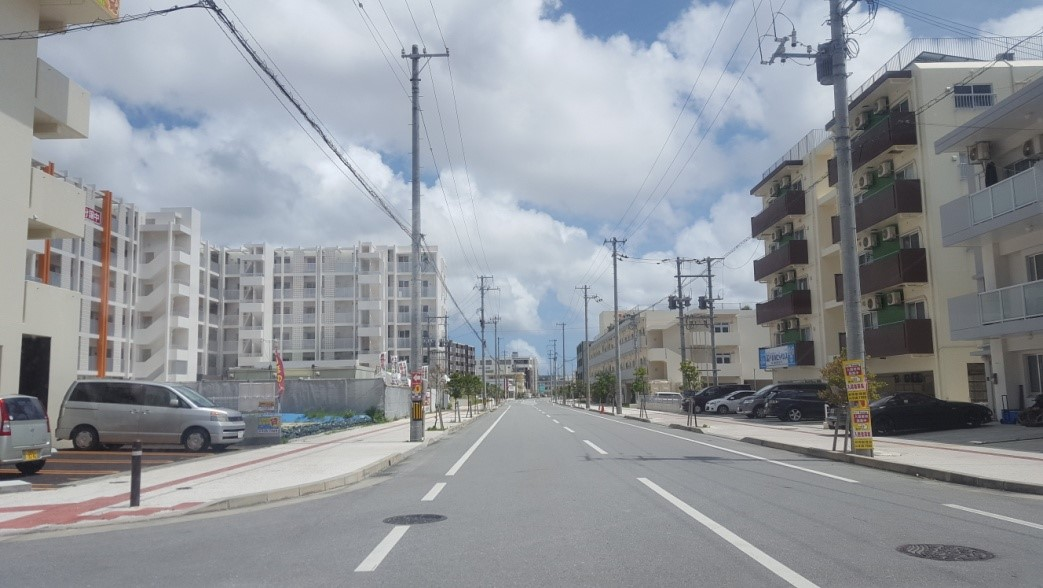okinawa-ijuu19