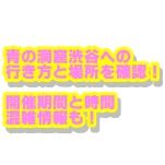 青の洞窟渋谷2019の行き方と場所を確認!開催期間と時間・混雑情報も!