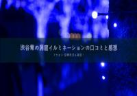 渋谷青の洞窟2019イルミネーションの感想と口コミ!アクセスと混雑状況も確認!