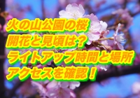 火の山公園の桜2019/開花と見頃は?ライトアップ時間と場所・アクセスを確認!